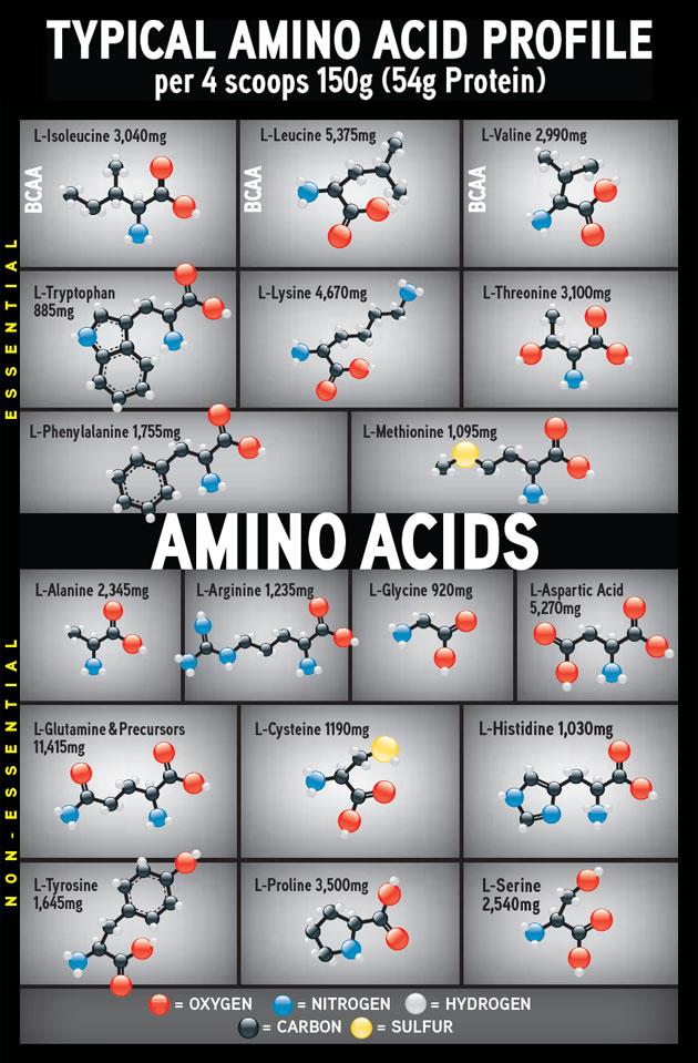 CytoGainer amino chart