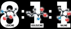 8 (leucine) : 1 (isoleucine) : 1 (valine)
