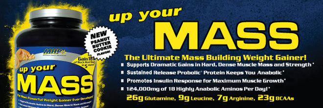 Up Your Mass. The ultimate Mass Building Weight Gainer!* - Supports Dramatic Gains in Muscle Mass and Strength.* - Sustained release Probiotic Protein Helps Keep you Anabolic.* - Promotes Insulin Response for Maximum Muscle Growth.* - 124,000mg of 18 Highly Anabolic Aminos Per Day! 26g Glutamine, 9g Leucine, 7g Arginine, 23g BCAAs.