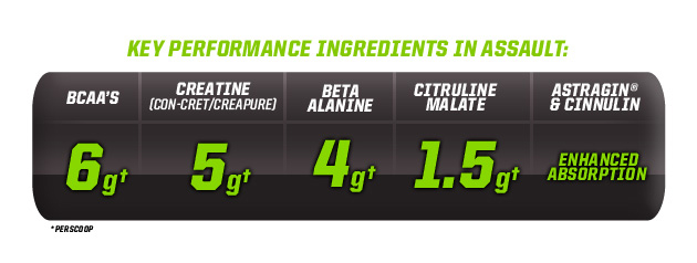 Key Performance Ingredients In Assault: BCAA's-6g†, Creatine (Con-Cret/Creapure)-5g†, Beta Alanine-4g†, Citruline Malate-1.5g†, Astragin & Cinnulin-Enhanced Absorption. †Per Scoop
