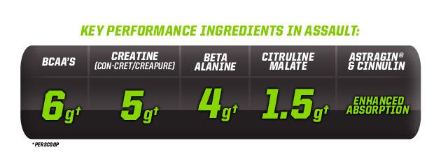 Key Performance Ingredients In Assault: BCAA's-6g†, Creatine (Con-Cret/Creapure)-5g†, Beta Alanine-4g†, Citruline Malate-1.5g†, Astragin & Cinnulin-Enhanced Absorption. †Per Scoop