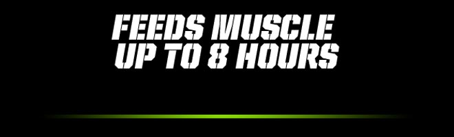 Feeds Muscle Up to 8 Hours