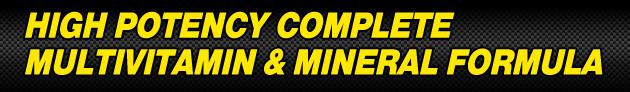 High Potency Complete Multivitamin & Mineral Formula