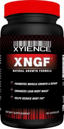 Image for Xyience - XNGF