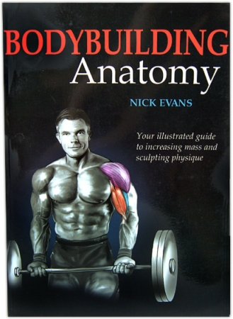 Books Bodybuilding Anatomy